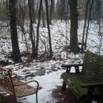 raintree woods benches